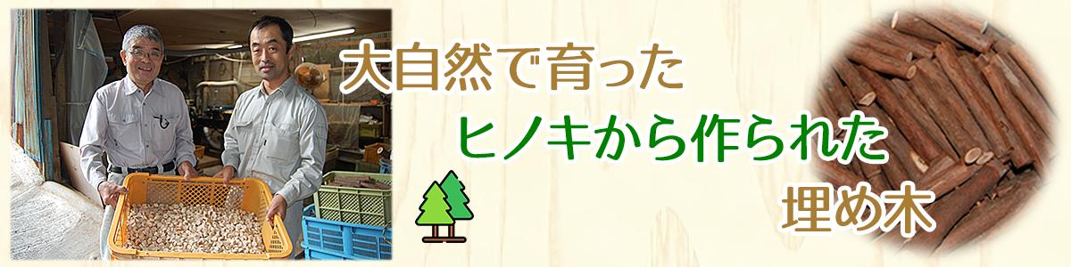大自然で育ったヒノキから作られた埋め木